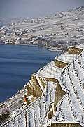 8339 - Photo : Suisse, canton de Vaud, vignoble de Lavaux sous la neige et le lac Léman