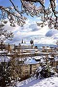 8465 - Suisse - Lausanne sous la neige et la Cathédrale