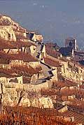 8504 - Photo : Suisse,  canton de Vaud, vignoble de Lavaux en terrasses - Saint-Saphorin, Lac Léman
