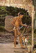 9429 - Photo : Hommes-fleurs, Mentawais, île de Siberut, Indonésie