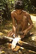 9430 - Photo : Hommes-fleurs, Mentawais, île de Siberut, Indonésie