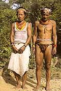 9439 - Photo : Hommes-fleurs, Mentawais, île de Siberut, Indonésie