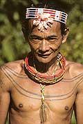 9444 - Photo : Hommes-fleurs, Mentawais, île de Siberut, Indonésie