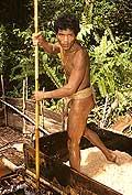 9452 - Photo : Hommes-fleurs, Mentawais, île de Siberut, Indonésie