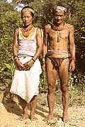 9461 - Photo : Hommes-fleurs, Mentawais, île de Siberut, Indonésie