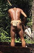 9470 - Photo : Hommes-fleurs, Mentawais, île de Siberut, Indonésie