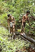 9474 - Photo : Hommes-fleurs, Mentawais, île de Siberut, Indonésie