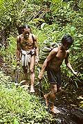 9484 - Photo : Hommes-fleurs, Mentawais, île de Siberut, Indonésie