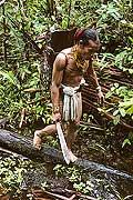 9488 - Photo : Hommes-fleurs, Mentawais, île de Siberut, Indonésie