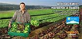 9885 - Campagne 2007 d'affiche et presse pour Migros Vaud - De la r�gion